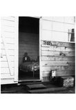Japanese-American Internment Center (Cabin) Art Poster Print Posters