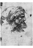 Leonardo da Vinci (Head of a Pharisee) Art Poster Print Prints