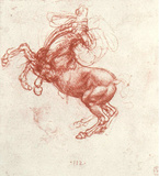 Leonardo da Vinci (Study of a rebel horse) Art Poster Print Masterprint