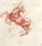 Leonardo da Vinci (Study of a rebel horse) Art Poster Print Masterprint
