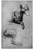 Leonardo da Vinci (Study sheet, dog) Art Poster Print Prints