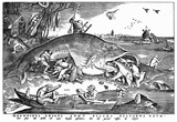 Pieter Brueghel (Big fish eat the little ones) Art Poster Print Poster