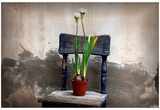 Flowers (On Chair) Art Poster Print Posters