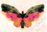 Albert Bierstadt Butterfly Art Print Poster Pósters