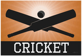 Cricket Orange Sports Poster Print Prints