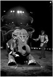 Bello and Big Apple Circus Elephant Archival Photo Poster Photo