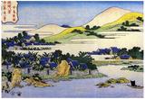 Katsushika Hokusai Landscape of Ryukyu Art Poster Print Poster