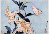 Katsushika Hokusai Lilies Art Poster Print Prints