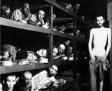 Buchenwald (Prisoners in Bunks) Art Poster Print Posters