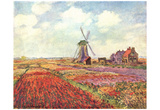 Claude Monet (Tulips in Holland) Art Poster Print Posters