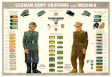 German Army Uniforms and Insignia Chart WWII War Propaganda Art Print Poster Prints
