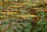 Claude Monet Water-Lilies 8 Art Print Poster Masterprint