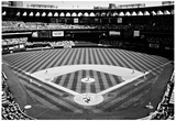 Busch Stadium Field St Louis Archival Photo Sports Poster Affiches