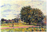 Alfred Sisley A Worker in the Field Art Print Poster Posters