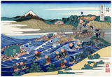 Katsushika Hokusai Mount Fuji from Kanaya on Tokaido Art Poster Print Prints