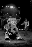 Bello and Big Apple Circus Elephant Archival Photo Poster Masterprint