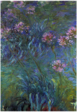 Claude Monet Jewelry Lilies Art Print Poster Posters