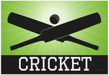 Cricket Green Sports Poster Print Posters