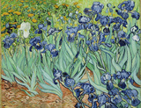 Vincent Van Gogh (Irises) Art Poster Print Masterprint