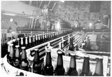 Beer Bottling Archival Photo Poster Prints