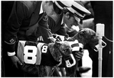 Greyhound Race at Derby Lane Archival Photo Poster Posters