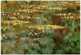 Claude Monet Water-Lilies 8 Art Print Poster Photo