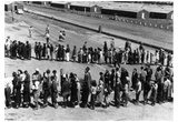 Japanese-American Internment Center (In Lines) Art Poster Print Prints