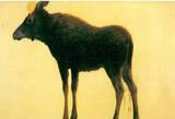 Albert Bierstadt Elk Art Print Poster Masterprint