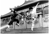 Kung Fu Women Archival Photo Poster Posters
