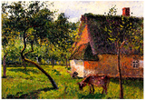 Camille Pissarro Orchard in Varengeville Art Print Poster Prints
