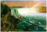 Albert Bierstadt Niagra Falls Art Print Poster Posters