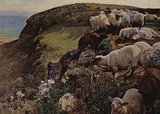 William Holman Hunt (Our English Coast (Verirrte sheep)) Art Poster Print Masterprint