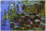 Claude Monet Water-Lilies Art Print Poster Posters