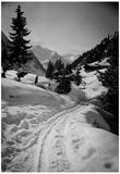Austria Archival Photo Poster Print Posters