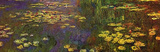 Claude Monet (Nymphéas (water lily)) Art Poster Print Masterprint