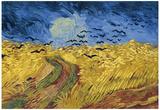 Vincent Van Gogh Wheatfield with Crows Art Print Poster Affiche