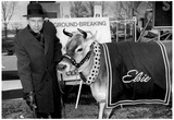 Elsie the Cow 1963 Archival Photo Poster Prints