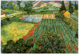 Vincent Van Gogh Field with Poppies Art Print Poster Posters