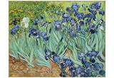 Vincent Van Gogh (Irises) Art Poster Print Print