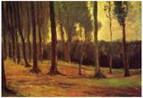 Vincent Van Gogh Edge of a Wood Art Print Poster Posters