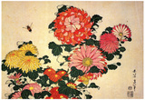 Katsushika Hokusai Chrysanthemums and a Bee Art Poster Print Prints