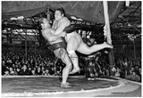 Sumo Wrestling Archival Photo Sports Poster Print Print