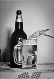 Beer Drinking Parakeet 1949 Archival Photo Poster Láminas