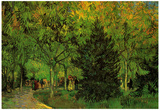 Vincent Van Gogh A Lane in the Public Garden at Arles Art Print Poster Posters