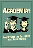Academia Tasty Nuts From Hawaii Funny Retro Poster Plakater