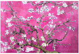 Van Gogh Almond Branches Pink Art Print Poster Posters