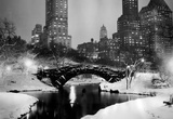 New York City Central Park in Snow 1953 Archival Photo Poster Masterprint