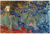 Vincent Van Gogh (Irises in Rich Earth) Art Poster Print Posters