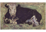Vincent Van Gogh (Exposed Cow) Art Poster Print Posters