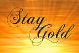 Stay Gold Ponyboy Print Poster Masterprint